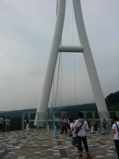 img_shizuoka_160548